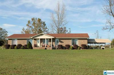 1018 COUNTY ROAD 406, THORSBY, AL 35171 - Photo 1