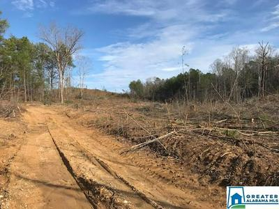 HWY 278 30 ACRES, Piedmont, AL 36272 - Photo 2