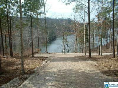 SIPSEY OVERLOOK DR, DOUBLE SPRINGS, AL 35553 - Photo 1