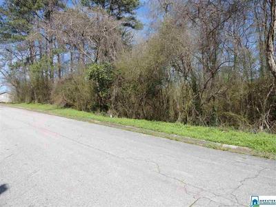 4905 RILLA LN # 32, Adamsville, AL 35005 - Photo 1