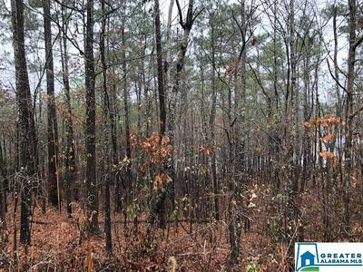 0 LAKESIDE LN 31, Alpine, AL 35014 - Photo 2