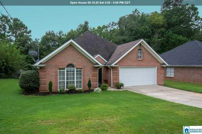 90 DOMINION RD, SPRINGVILLE, AL 35146 - Photo 1