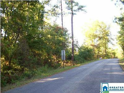 0 HAVEN CIR 39, Riverside, AL 35135 - Photo 2