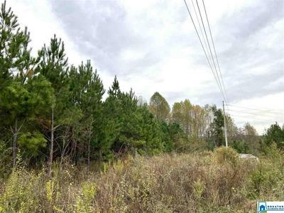 0 TRAFFORD CO LINE RD # 0, TRAFFORD, AL 35172 - Photo 1