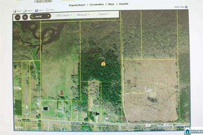 1476 PINEDALE RD, Ashville, AL 35953 - Photo 2