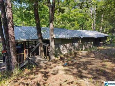 136 MINOR LOOP, ADGER, AL 35006 - Photo 1