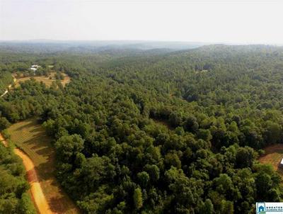 360 CO RD 263 273 AC, Lineville, AL 36266 - Photo 1