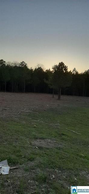 1810 BONE DRY RD 4, Kimberly, AL 35091 - Photo 1