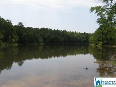 LAKE PARADISE RD, VANCE, AL 35490 - Photo 1