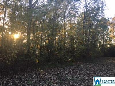 0000 MARGARET LN LOT 2 BLOCK A AND B, Lincoln, AL 35096 - Photo 2