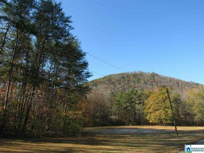 0 CO RD 219 20, Piedmont, AL 36272 - Photo 2