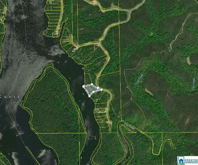 LOT-31 WATERS WAY # LOT-31 - LAKE LOT, CLANTON, AL 35046 - Photo 1