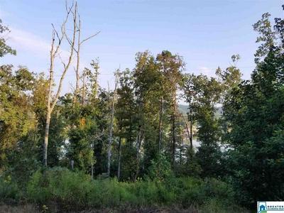WALDROP RD 13, Ashville, AL 35953 - Photo 2