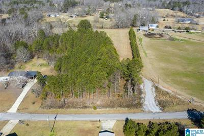 110 OLD WEST RD # 1, THORSBY, AL 35171 - Photo 1