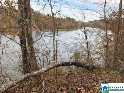 0 UNDERWOOD FERRY RD 2+ ACRES, Quinton, AL 35130 - Photo 1