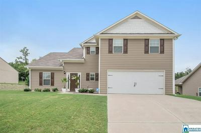 195 SMITH GLEN DR, SPRINGVILLE, AL 35146 - Photo 2