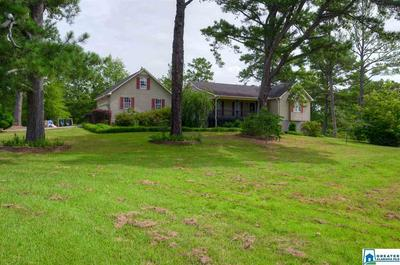 17995 HIGHWAY 55, Sterrett, AL 35147 - Photo 1
