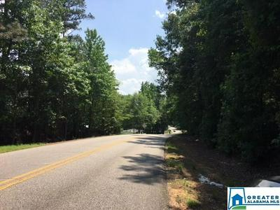 SIPSEY VALLEY RD, BUHL, AL 35446 - Photo 1