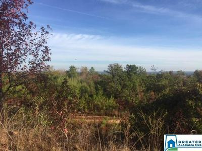 0 CO RD 435 2, Verbena, AL 36091 - Photo 2