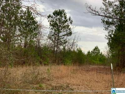 0 CO RD 99 1, Verbena, AL 36091 - Photo 2