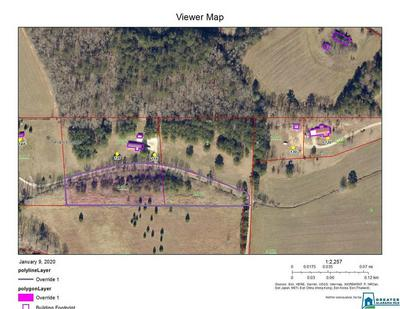 LOT 2&3 CO RD 1032 2&3, Piedmont, AL 36272 - Photo 2