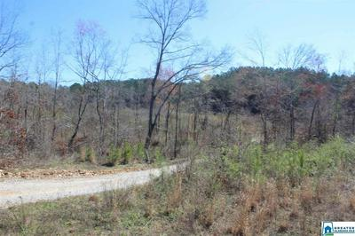 0 REED CREEK DR 0, SHELBY, AL 35143 - Photo 1
