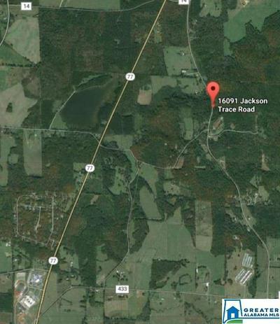 16091 JACKSON TRACE RD # 0, LINCOLN, AL 35096 - Photo 1