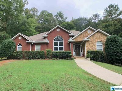 50 LAWRENCE DR, SPRINGVILLE, AL 35146 - Photo 1