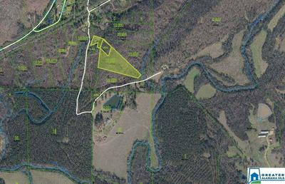 TAYLOR CROSSING 7.35 ACRES, Ohatchee, AL 36271 - Photo 1