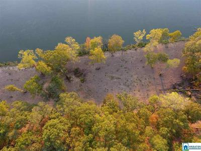 0 HWY 77 0, Ohatchee, AL 36271 - Photo 1