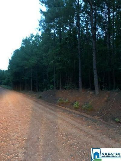 CO RD 268 38 AC., Roanoke, AL 36274 - Photo 1