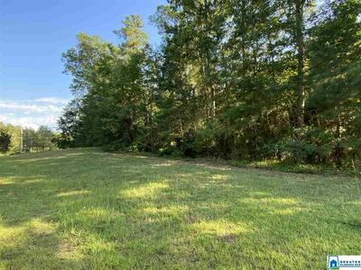 ESTES POINTE DR, ARLEY, AL 35541 - Photo 2