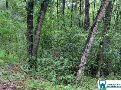 9583 CO RD 5 # 6 AC, HAYDEN, AL 35079 - Photo 2