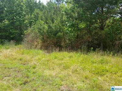 0000 N JIM BAGWELL RD # TBD, EMPIRE, AL 35063 - Photo 1