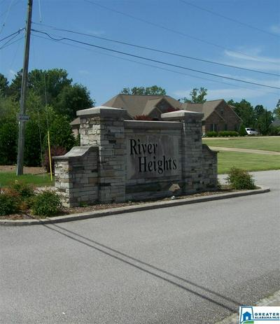 RIVER HEIGHTS DR 3, Cleveland, AL 35049 - Photo 1