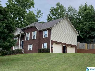 13725 REMLAP DR, REMLAP, AL 35133 - Photo 2