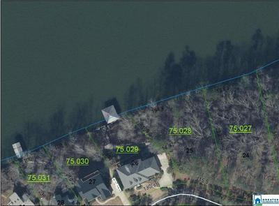0 MOHAWK TRL 25, Ohatchee, AL 36271 - Photo 2