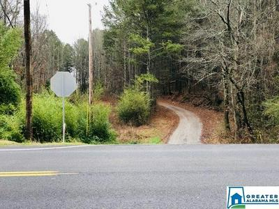 33 ACRES HWY 91 # 33 AC, HANCEVILLE, AL 35077 - Photo 2