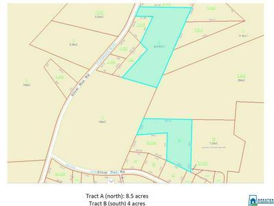 2000 SILVER RUN RD 8.5 ACRE PARCEL, Munford, AL 36268 - Photo 2