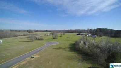 114 GENTLE MEADOW DR 14, VINCENT, AL 35178 - Photo 2