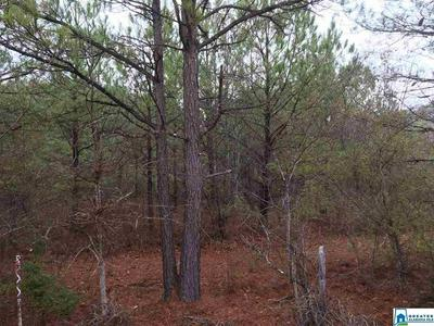 JACKSON TRACE RD 28 ACRES, Ohatchee, AL 36271 - Photo 1