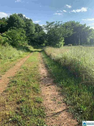 LOUINA RD 81 ACRES, Roanoke, AL 36274 - Photo 1