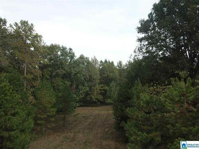 0 CO RD 823 # NONE, WADLEY, AL 36276 - Photo 2
