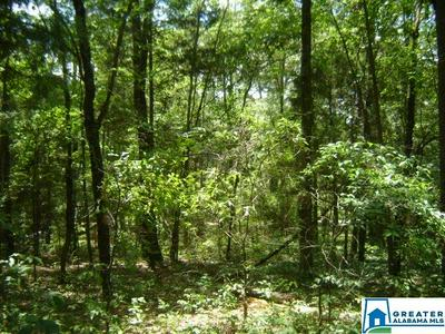 00 LAY DAM RD # 1, CLANTON, AL 35045 - Photo 1