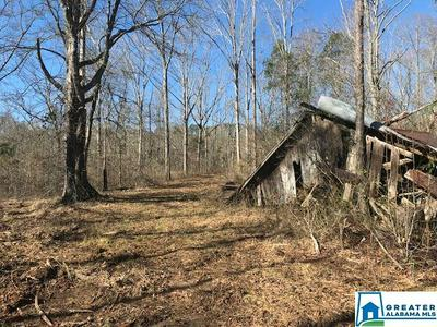 1001 CO RD 11 96 AC, Goodwater, AL 35072 - Photo 1