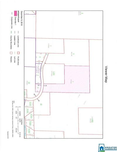 0 TINNEY LN 0, Alpine, AL 35014 - Photo 2