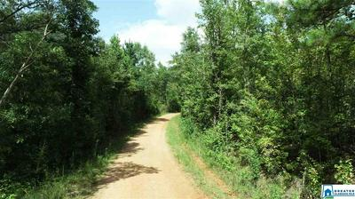 43 ACRES CO RD 7 # 43 ACRES, WEDOWEE, AL 36278 - Photo 2