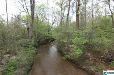 6300 CO RD 160 187 AC, Roanoke, AL 36274 - Photo 1