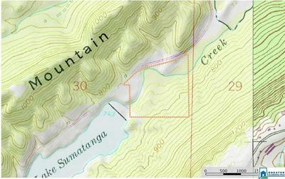 SUMATANGA RD 39+/ AC SOUTH OF SUMATANGA RD BEHIND, Gallant, AL 35972 - Photo 2