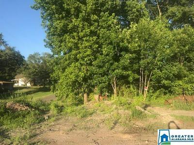 2400 WARRIOR TRAFFORD RD # N, TRAFFORD, AL 35172 - Photo 2